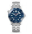 Omega Seamaster Diver Co-Axial